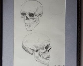 Study of skull in 2 views