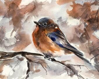 Bird Art Print, Robin Bird Watercolor Painting Print, Watercolor Print, Bird Print, Bird Wall Art