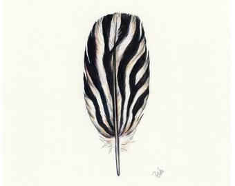 Zebra Feather, Zebra, Zebra Print, Watercolor Feather, Safari, Black White Feather Art, Africa Art Zebra Painting, Safari Animals, Feather