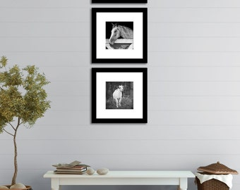 Farm prints, Black and White Wall Art Set of 3 Prints, Cottage Style Home Decor,  Living Room, rustic Entryway Wall Set Photograph Gray set
