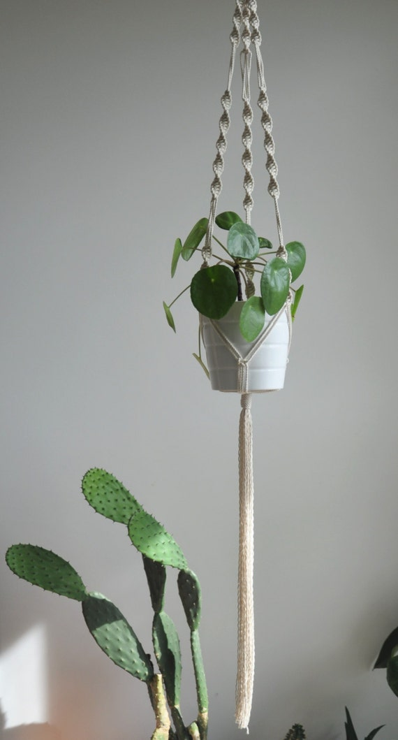 Macrame Plant Holder Indoor Plant Hanger Hanging Planter