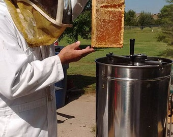 Bee Keeper and Honeycomb