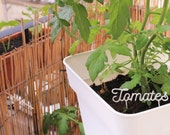 Words to plant - label of garden - planting - custom labels - 3D printing