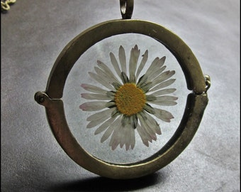 A real Daisy in a glass Locket