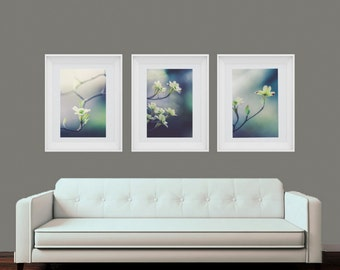 Flower Wall Art, Set of 3 Prints, Dogwood Prints, Bathroom Art, Flower Print Set, White Dogwood Art, Minimalist Art, Blue, Many Sizes