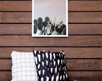 Home Décor, Cactus Décor, Art Print, Cactus Print, White Framed Print, Wall Decor, 8x10, 16x20, Wall Hanging, Photography. Beach CactusPrint