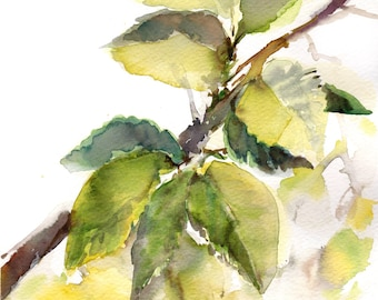 Leaves ORIGINAL Watercolor Painting, Green Painting, Watercolour Art, White Background, Branch with leaves