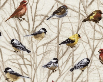 Bird Fabric, Timeless Treasures Cabin-C2589-Cream, Birds on Branches Cotton Fabric, Chickadees, Finches, Grosbeak, Cardinal Quilt Fabric