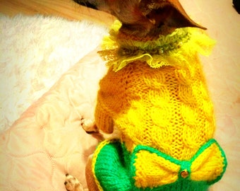 dog clothes.clothing for dog.Dog Dress.Small dog Clothes.dog clothes