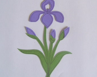 Purple iris die cut