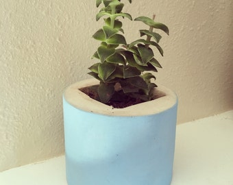 Small blue planter