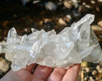 Lemurian Seed Quartz Crystal Cluster/Brazil