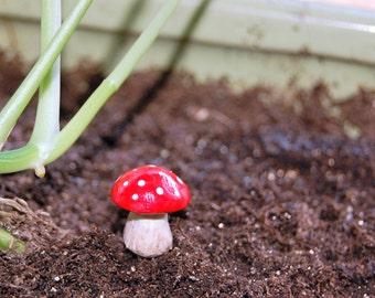 5 Fairy Garden Toadstools, Terrarium Accessories, Miniature Garden