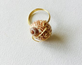 Hawaii Shell Gold Wire Wrapped Ring Size 7