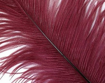 New Color - Burgundy Large #1 Ostrich Feathers -  Feather - Dyed Plume