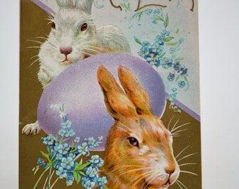 Vintage Postcard, Easter Postcard, Holiday Postcards, Bunny Postcard, Rabbit Postcard, Animal Postcard, Easter Basket, Whitney Made, Epsteam