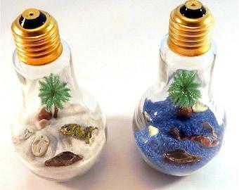 Tropical Island Lightbulb Glass Terrarium / Miniature Zen Garden / Light Bulb Desktop Vacation /