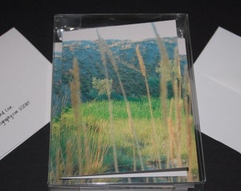 Blank photo cards (box of 10)