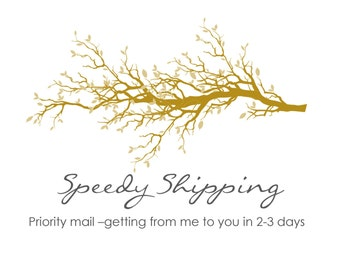 Speedy shipping- Priority mail delivery