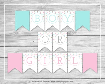 Twinkle Little Star Gender Reveal Banner - Printable Gender Reveal Banner - Pink Aqua Gold Gender Reveal - Boy Or Girl Banner - SP139