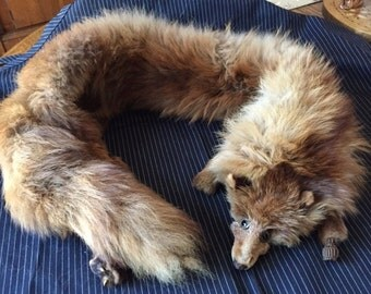 Genuine 1930s-1940s fox stole