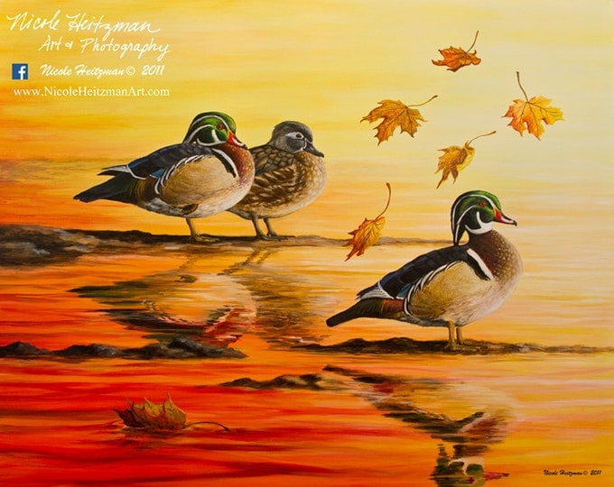 Autumn Reflections Wood Duck Painting Gift for men Wood Duck Art Duck Print Wildlife Art Waterfowl Print Canvas Print by Nicole Heitzman