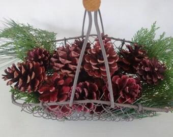 Red Pinecones 25
