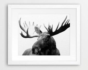 Moose Printable Art, Moose Photography Black And White, Antlers Print, Woodlands Animal, Modern Decor, Nursery Kids Wall Art, Digital Print