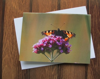 Butterfly Greetings card C6