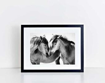 Wild Horse Photography, Beach Decor, Horse Wall Art, Equine Print, Black White, Nursery Decor, Horse Photo, Assateague Island, Maryland