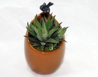 Dark Brown Ceramic Hanging Succulent Planter