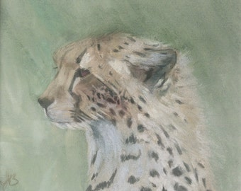 Cheetah Cub II original chalk pastel painting by Tracy Butler