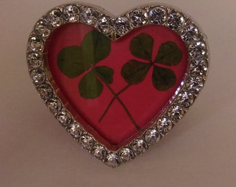 Two real four leaf clovers in heart frame