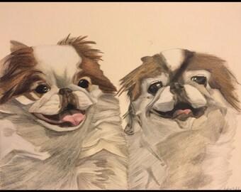 Custom Pet Portrait (Two Pets), Custom Dog Portrait, Custom Cat Portrait, Dog Portrait, Cat Portrait, Pet Portrait, Custom Dog Art