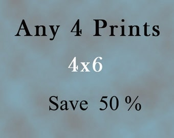 """Four 4x6"""" prints of your choice @ 50% Off"""
