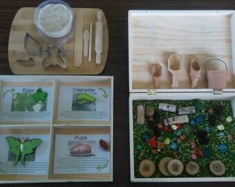 Montessori Life Cycle, Luna Moth, Life Science