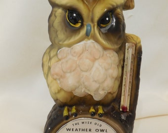 Wise Old Weather Owl with Thermometer, Graduation Weather Owl, Vintage Weather Owl, Vintage Graduation Owl