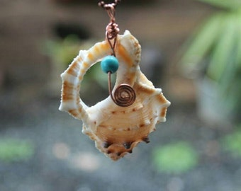 Natural sea shell pendant
