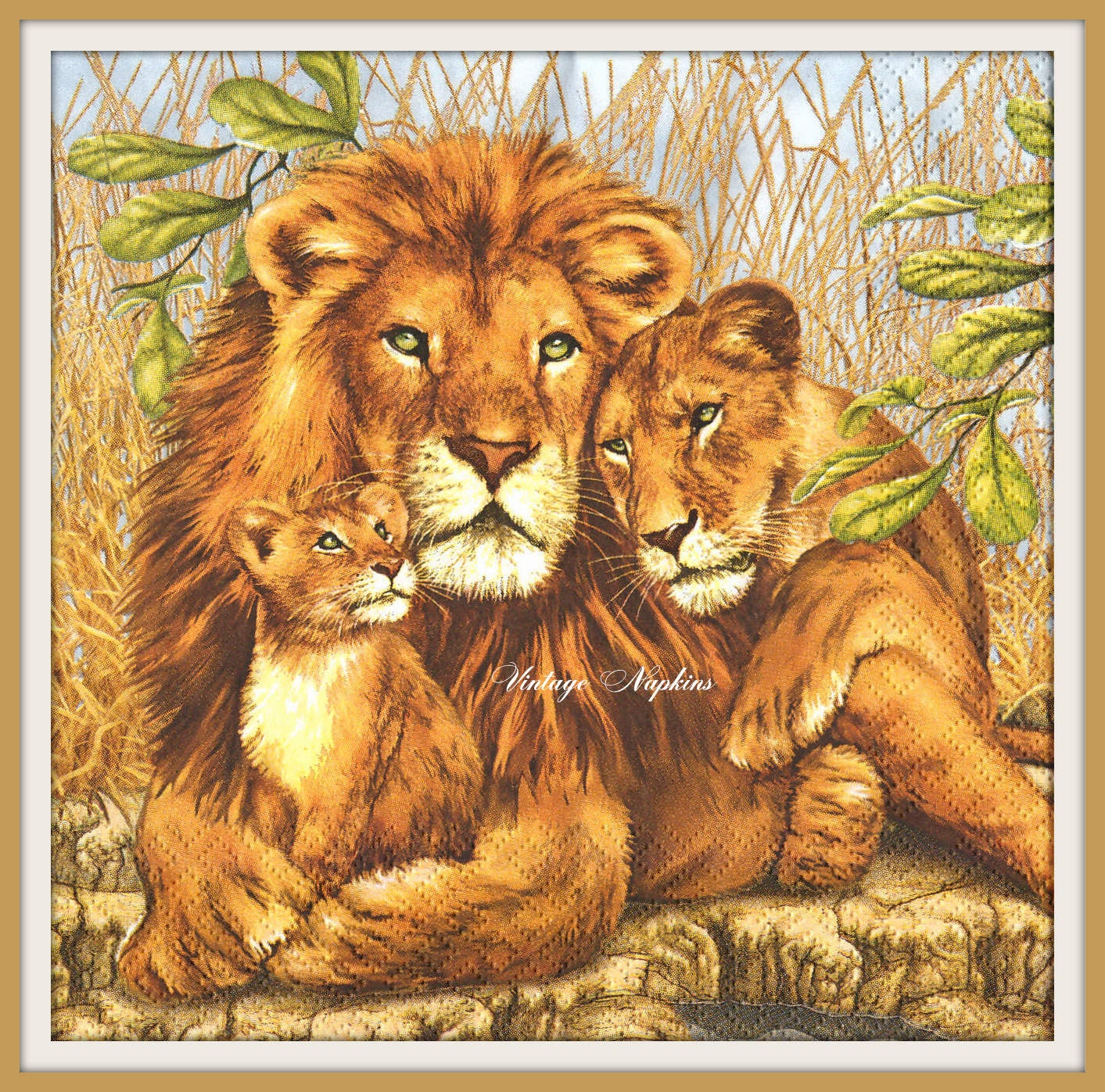 african lion essay Essay on lion for class nursery, 1, 2, 3, 4, 5, 6, 7, 8, 9 and 10 lion essay introduction the lion is a wild animal the african lion is the most common type of lion it has the species panther, leo.
