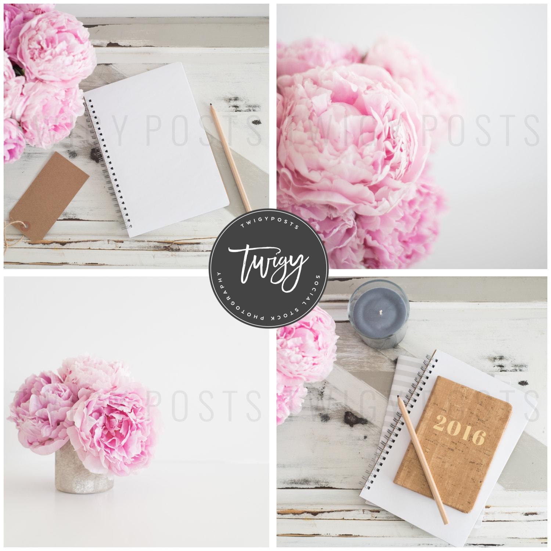 Styled Stock Photography Instagram Bundle 4 Pink Peony