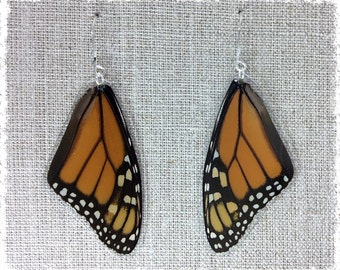 Real Butterfly Wing Jewelry; Earrings;  Monarch; Orange and Black-;TOP Wing; Insect Jewelry