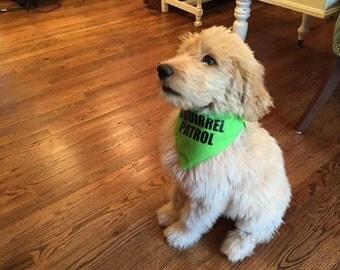Dog Bandana Accessory, dog gift, Squirrel Patrol, Dog Gift, Triangle Style, Dog loves squirrels, Up inspired