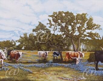 original oil painting, Longhorns, bluebonnets, Texas, scenery, cattle, large, fine art, Jan Brown