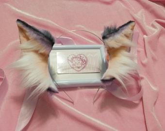 Kitten Space Ears ~!