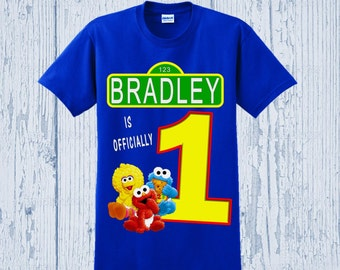 Sesame Street Birthday Shirt - Sesame Street First Birthday Shirt - Other Styles Available