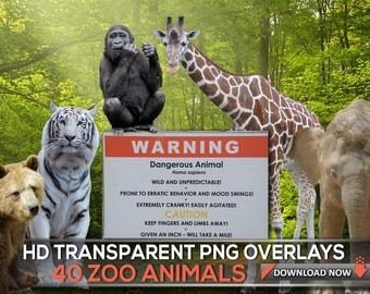 40 TRANSPARENT PNG ZOO Animal Overlays, Wild Animals Photoshop Overlay And Photograpy Png Overlays, Digital Background, Digital Backdrop