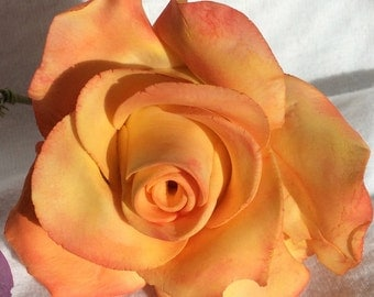 Medium rose - Made to Order.  Various colors available