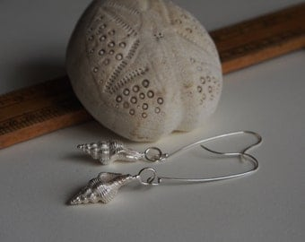 Cast Sterling Silver Sea Shell Earrings