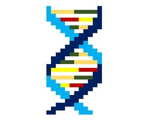 Cross Stitch Pattern - DNA Double Helix for scientists and friends
