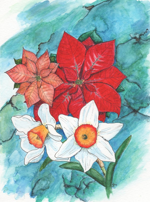 December Birth Flowers - Poinsettia & Narcissus by Blazing Star Studio